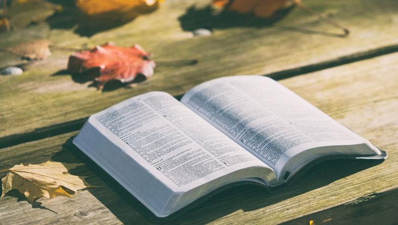 Matthew 28:19 The Call to Discipleship